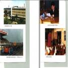 阜新蒙古族自治县民族志.pdf下载