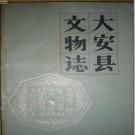 大安县文物志.pdf下载