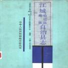 江城哈尼族彝族自治县志(1989版)PDF下载
