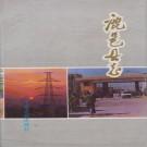 鹿邑县志(1992版 中州古籍出版社)PDF下载
