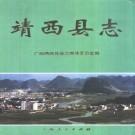 靖西县志(2000版)PDF下载