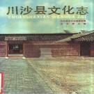 川沙县文化志 1989版 PDF下载