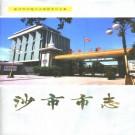 沙市市志(第四卷)1999版 PDF下载