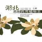 湖北恩施药用植物志 2006版(上下册)PDF下载