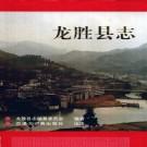 龙胜县志 1992版 PDF下载