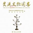贵港文物图志 PDF下载