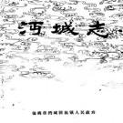 仙桃市沔城志 PDF下载